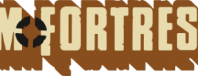 Team Fortress 2 Logo